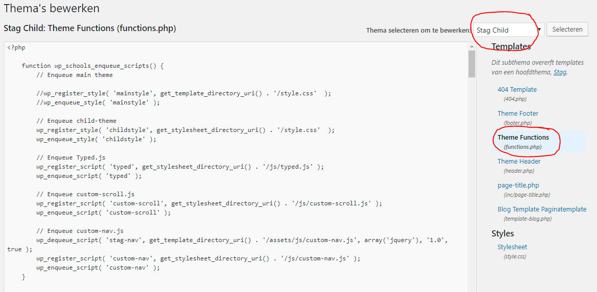 Google Tag Manager installeren functions.php