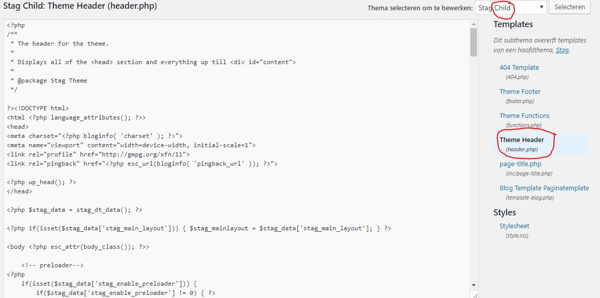 Google tag manager installeren WordPress editor