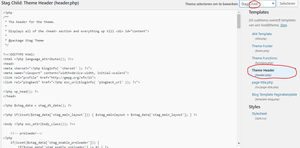 Google Tag Manager Installeren WordPress Code