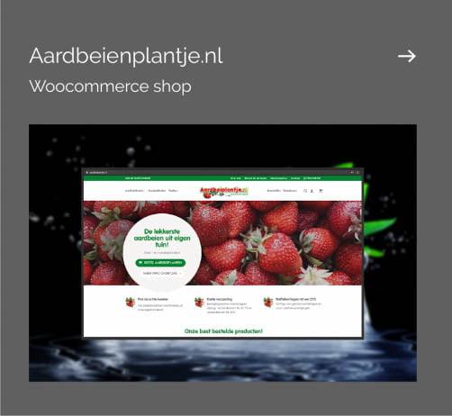 aardbeienplantje-mockup-502x462
